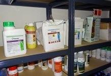 Pestycydy to leki dla roślin