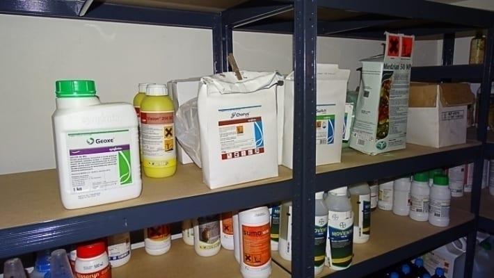 Pestycydy To Leki Dla Roślin Ogrodinfopl