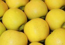 Ceny jabłek w listopadzie w UE. Polskie znów…prawie najtańsze