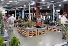 Zwycięskie rośliny w konkursie 24. edycji Zieleń to Życie