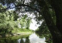 Polska przegrała sprawę o unijną dyrektywę wodną