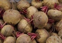 Rosną ceny warzyw na Ukrainie. Powodem mróz