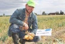 Prezentacja osiągnięć hodowli cebulowej