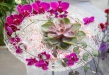 Egzaminowe zmagania florystyczne