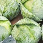 Krajowe warzywa gruntowe coraz droższe