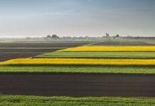 Nie trzeba być rolnikiem, aby kupić ziemię