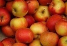 Słoweńcy preferują jabłka