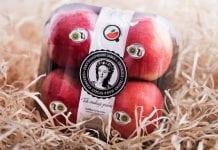Historia Jabłek Grójeckich dla najmłodszych