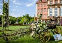 Chryzantema królową wiosny na Festiwalu Kwiatów i Sztuki w Zamku Książ