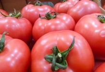 Ukraina: spadek eksportu, wzrost importu pomidorów