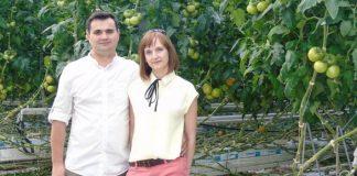 Pomidory malinowe chronione biologicznie