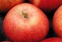 Australia wpuszcza jabłka z Chin