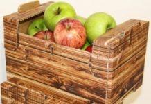 Opakowania do owoców i marketing
