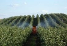 Szkolenia z zakresu integrowanej ochrony roślin