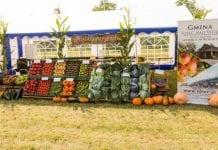 III Nadwiślańskie Święto Upraw Ogrodniczych
