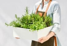 Rynek świeżych ziół i warzyw zmienia oblicze