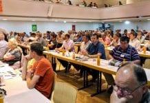 W Poysdorf o morelach: odmiany, agrotechnika, ochrona
