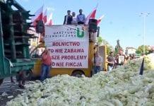 Protest producentów warzyw i ziemniaków