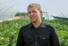 Biostymulatory wzrostu, kwitnienia i… korzyści