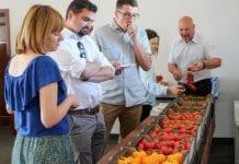Seminarium pomidorowe w Sobieniach Szlacheckich