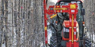 Zalety i wady mechanicznego cięcia drzew