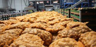 Ziemniaki będą jeszcze drożeć