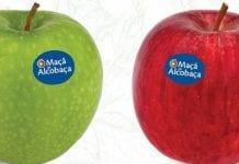 Regionalne jabłka a promocja na dużą skalę