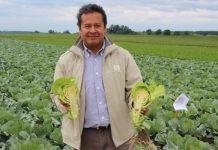 Meksykańska technologia i rozwiązania w uprawie warzyw