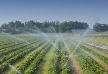Copa-Cogeca: ponowne wykorzystanie wody to krok w dobrym kierunku
