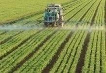 Rolnictwo w Unii Europejskiej