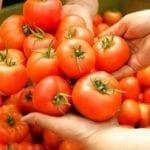 Warzywa i owoce w regulowaniu ciśnienia krwi
