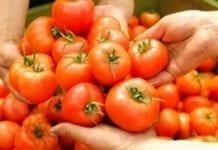 Niemiecki rynek warzyw