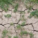 Zmiana klimatu – bezsprzecznie efekt działalności człowieka