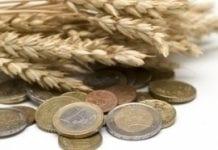 ARiMR: trwa realizacja dopłat bezpośrednich za 2011 r.