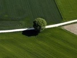 Umowa dzierżawy gruntu rolnego