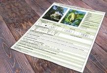 Dendrologiczne osobliwości – karty drzew