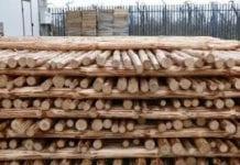 Konstrukcje dla jabłoni i gruszy