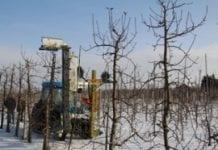 Pokaz mechanicznego cięcia drzew
