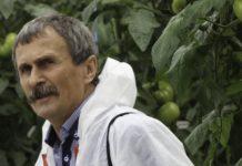 Prawidłowe podejście do nawożenia warzyw
