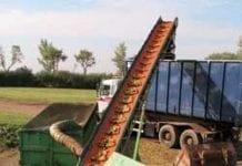 Niemieccy rolnicy będą płacić za stosowanie pestycydów?