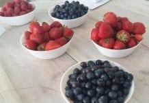 Udany sezon jagodowy na Ukrainie
