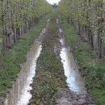 Pomoc dla gospodarstw poszkodowanych w wyniku klęsk żywiołowych