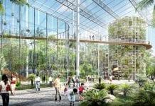 Szanghaj zbuduje dzielnicę rolniczą