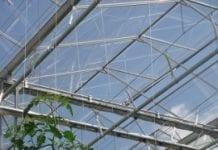 Rozwój ogrodnictwa szklarniowego
