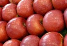 Naukowcy opracowali sztuczne jabłko. Po co?