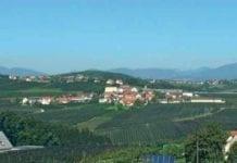 Koszty produkcji jabłek w Południowym Tyrolu