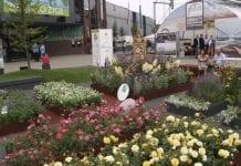 Zieleń to Życie –  międzynarodowe targi dobrej zieleni w Warszawie