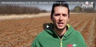 Komunikat jagodowy 9.04.2018 – Michał Malicki i zalecenia w uprawie truskawki, maliny i borówki