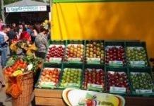 XXIV Międzynarodowa Wystawa Rolnicza Agropromocja 2014