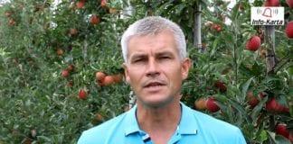 Komunikat sadowniczy Agrosimex z 29.08 – zabiegi przed zbiorami